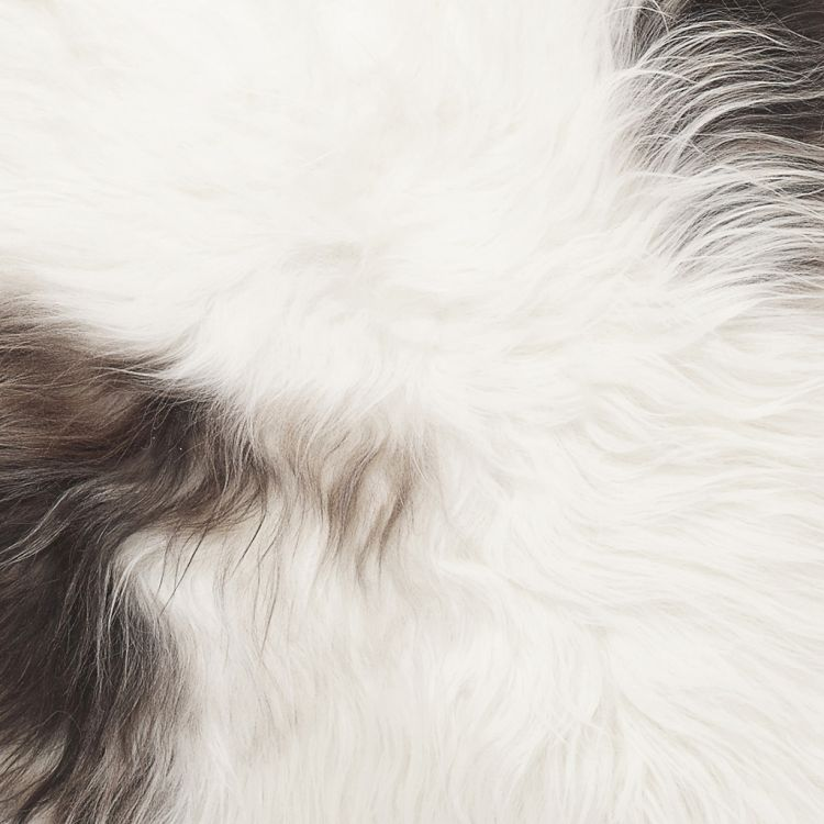 Molly lampaantalja 90x60 cm täplikäs luonnonväri